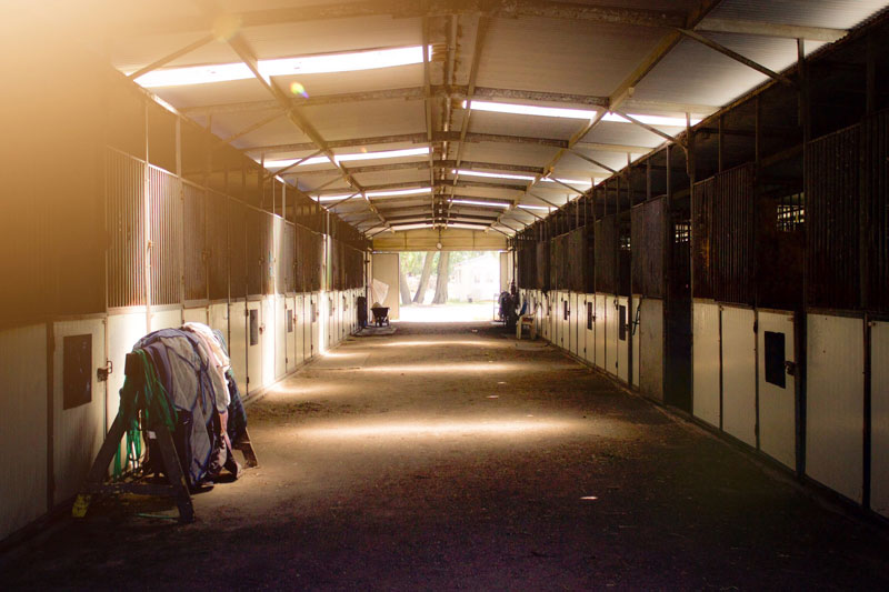 hunter valley horse stables